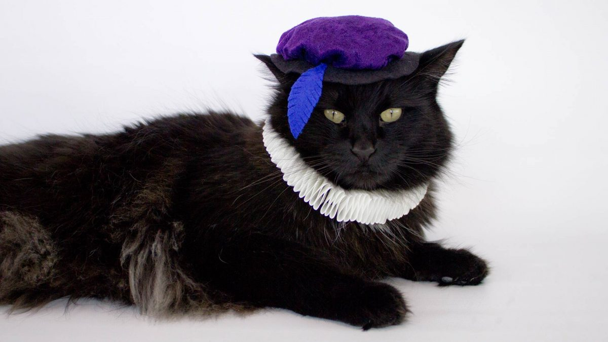 Cat Renaissance Costume - Side